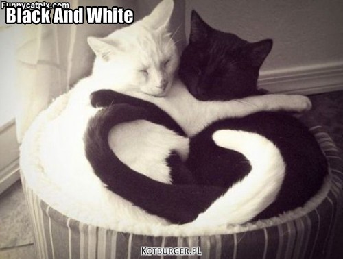 Black And White – Black And White